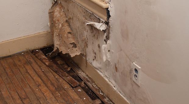 Mauertrockenlegung - Sanierungsmethoden für feuchte Mauern